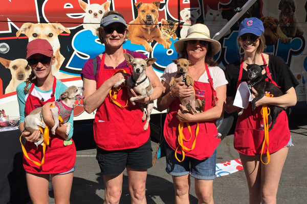 Volunteer-girls-puppies-SNAP-Spay-Neuter-Action-Project-Adopt-Pet-Mobile-Vet-San-Diego.JPG-(1)